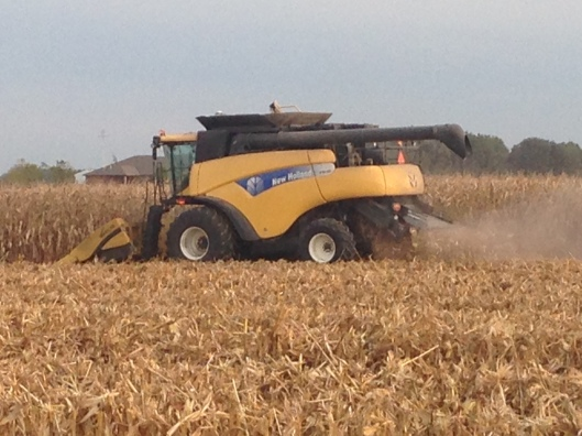 new holland combine harvesting corn