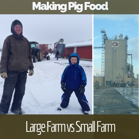 Large & Small Farm Comp