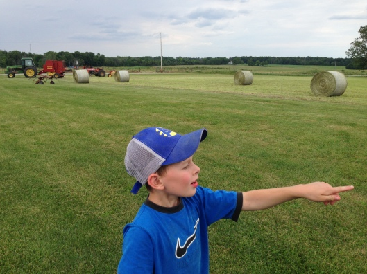 counting round bales